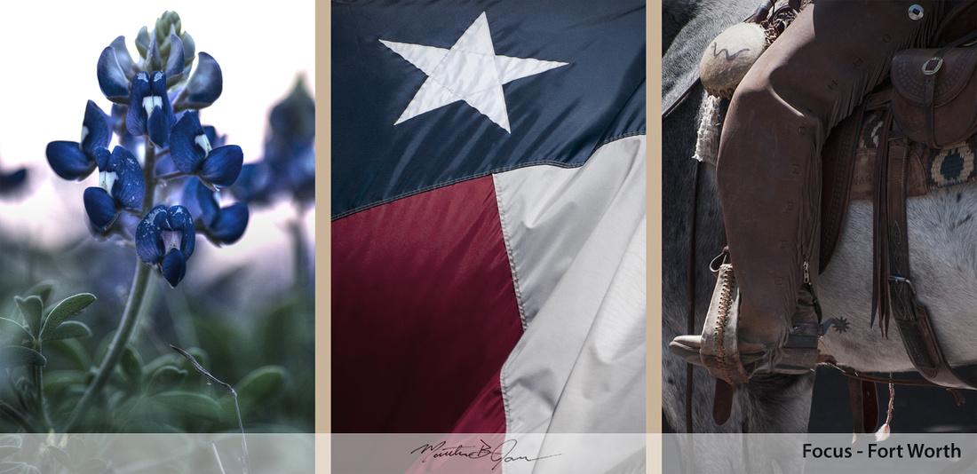 Bluebonnet, Cowboy, Cowboy boot, Fort Worth, Horse, Spur, Texas, Texas flag, Triptych, Western
